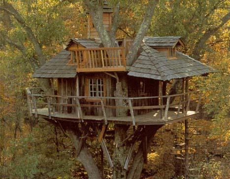Una casa sull 39 albero - Come costruire una casa sull albero ...