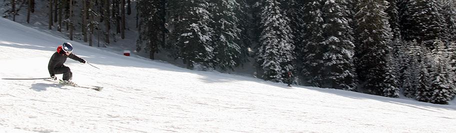 Mazzingando tra i campi scuola ed boschetti dell alpe