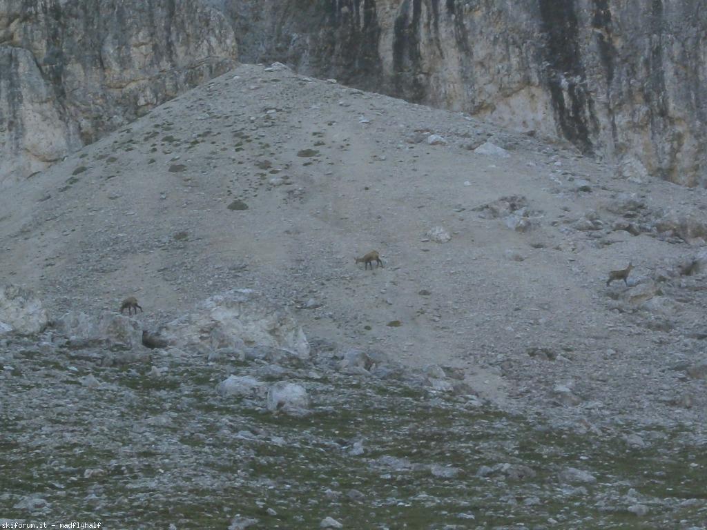 Vacanze ntra i sass atto 1 scena 2 sentiero for Cabine di pesca nel ghiaccio alberta